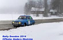 RS2014_eka_136