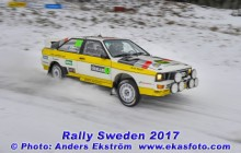 RS2017_164pettersson_SS4_web