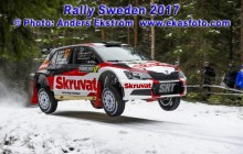 RS2017_17Solberg_SD01_web