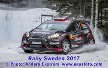 RS2017_36Brynildsen_SD01_web
