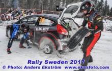 RS2017_36brynildsen_ss9_web