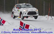 RS2017_91Levin_SS4_web